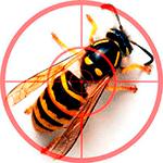 Средства от ос, пчел, клещей